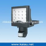 Indicatore luminoso di inondazione del LED (KA-FL-161B)