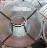 Prepintar la bobina de acero galvanizada, PPGI, bobina del soldado enrollado en el ejército PPGI de China