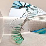 Escalera espiral de cristal con el acero inoxidable Raillling