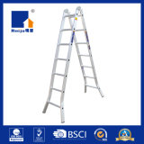 Lichte de twee-Verbinding van het Metaal van de Plicht Ladder