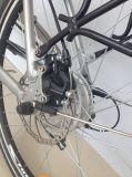 리튬 건전지 도시 E 자전거 콜럼븀 26n01