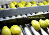Chaîne de production mis en bouteille de jus d'orange/raisin