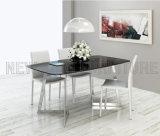 Tableau industriel blanc dinant moderne en métal de cru de mode neuve (NK-DT203-4)