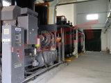 Druck-Schwingen-Aufnahme-Stickstoff-Generator für Nahrung