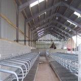 Edifícios de aço Prefab da vertente da vaca com baixo custo