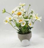 Bonsais Home das flores artificiais da decoração de /Office