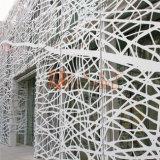 Smaragdfarbe graviertes perforiertes Aluminiumpanel für Einkaufszentrum