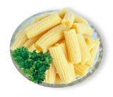 Maíz de bebé conservado corte del maíz de bebé con precio barato