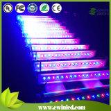 DMX512 RGBW (1) LEDの壁の洗濯機With3年の保証の4