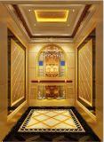 Sr. gravado espelho do elevador do elevador do passageiro & Mrl Aksen Ty-K107