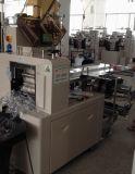 Multifunktionskissen-Typ Verpackungsmaschine (ZP-2000)