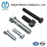 Hex Nut와 Washer를 가진 탄소 Steel, Stainless Steel 또는 Square/T Head Bolt