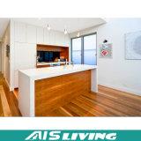 Projetos clássicos dos gabinetes de cozinha das mobílias de madeira da cozinha da grão (AIS-K114)