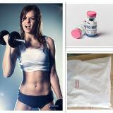 Testoterone di erbe Enanthate degli steroidi di Bodybuilding dell'estratto della polvere steroide
