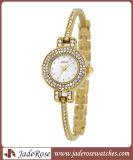 A forma 2015 a mais nova e relógio magro das mulheres da pulseira de quartzo