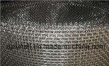 Rete metallica quadrata galvanizzata di buona qualità (XA-SM007)
