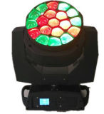Lumière principale mobile de faisceau de la tête 19X15W de l'éclairage RGBW DEL d'étape de grand oeil mobile d'abeille