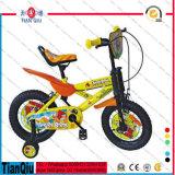 Neues und populäres preiswertes Kind-Fahrrad, preiswerte Großhandelskarikatur scherzt Fahrrad, heißer Verkaufs-hölzernes Fahrrad-Spielzeug für Baby