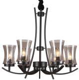 Candelabro preto do ferro que leve a lâmpada interior (SL2246-6)