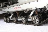 800cc/1000cc/1500cc RCのガスの自動氷のスノーモービル