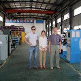Jp Jianpingの二重大皿陶磁器ブレーキディスクバランス機械