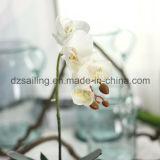 Цветок уникально орхидеи бака искусственний (SF15479)