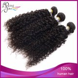 7A Kinky brasiliano Curly Cheap Vigin Remy Human Hair Weft
