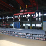 Gr460A/B Misvormde Staaf van de Vervaardiging van Tangshan China