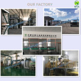 Chinesische grüne Gws Kürbis-Startwerte für Zufallsgenerator AA mit heißem Verkauf