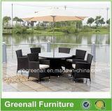 Mobilia/patio di vimini del giardino che pranza gli insiemi/insieme esterno del patio