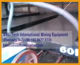 Gouden Fabrikant van de Lijst van de Scheiding van mineralen de Schuddende