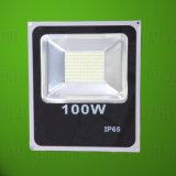 luz do foco do diodo emissor de luz 100W