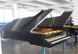 Negro 9 pies de piano magnífico Hg-275e de concierto