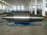 Pièces de machines de métallurgie d'acier allié modifiant le rouleau