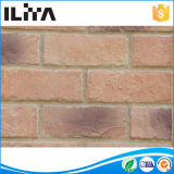 Mattone coltivato mattonelle artificiali del rivestimento della parete di pietra (YLD-10030)
