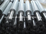 O eixo do forjamento do aço inoxidável com galvaniza