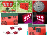높은 Power LED Growing Light 324W LED Grow Light