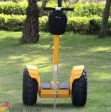 Char électrique d'équilibre d'individu de roue du scooter deux