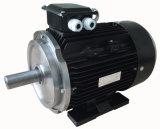 Motor de indução trifásico da eficiência da ceia da série Ye4 (IE4, GB1)