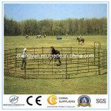 Norton стробирует панель лошади регулируя оборудования поголовья