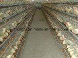 Automatisches Geflügel überlagern Huhn-Vogel-Geräten-Rahmen