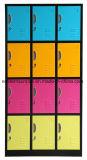 12のドアコンパートメント鋼鉄貯蔵用ロッカー