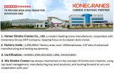 Leistungsfähiger elektromagnetischer Elektromagnet-Heber für Stahlprodukt