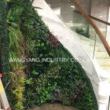 벽 가장자리를 위한 인공적인 주문을 받아서 만들어진 회양목 녹색 식물 벽