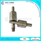 OEM/ODM Manufacture chino de Wb Wr Series Water Pump Bearing Auto Bearing