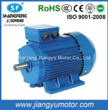 380V Ye2 Series Cast Iron/Aluminum Three-Phase Asynchronous Induction Electric Motor with CE RoHS