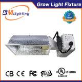 세라믹 금속 Hydroponic 할로겐 전구 315W CMH 밸러스트는 전등 설비를 증가한다