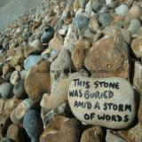Venda quente pedra decorativa gravada misturada