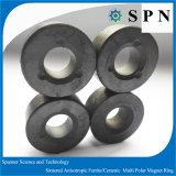 De permanente Veelpolige Ringen van het Ferriet van de Magneet voor het Stappen Motoren