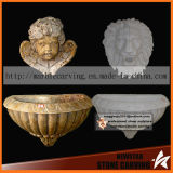 De Fontein van de Muur van het Water van de engel met de HoofdTuin BinnenMf1765 van de Leeuw